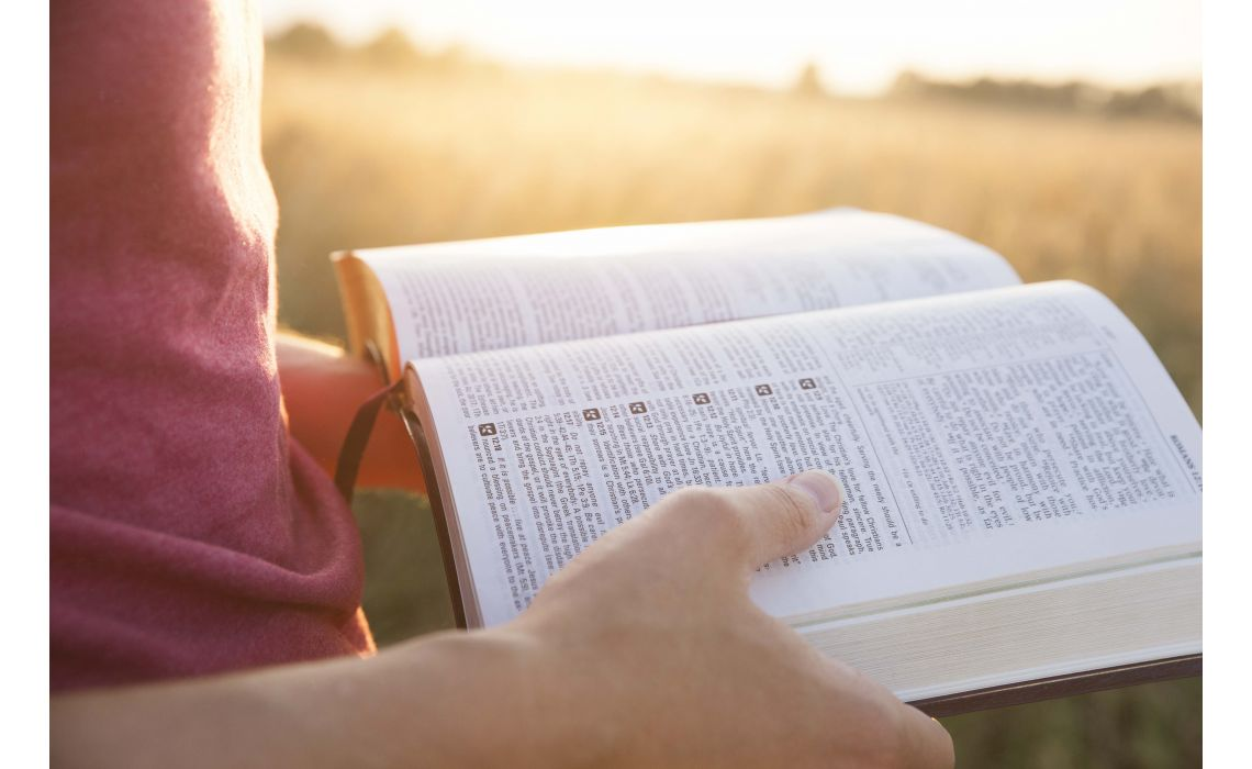 Storyline: 12 Plot Points in the Story of the Bible and How they Help Us Evangelize a Post-Christian Culture